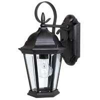 1 Light Outdoor Wall Fixture